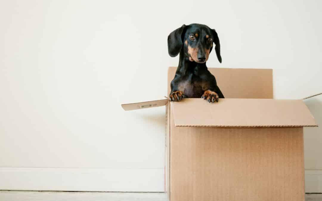 Calcul du volume pour un déménagement : la bonne méthode